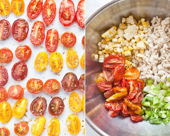 Tomato Corn Barley