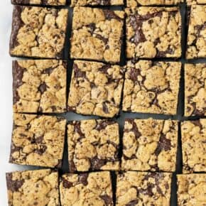 Chocolate Chip Streusel Brownies