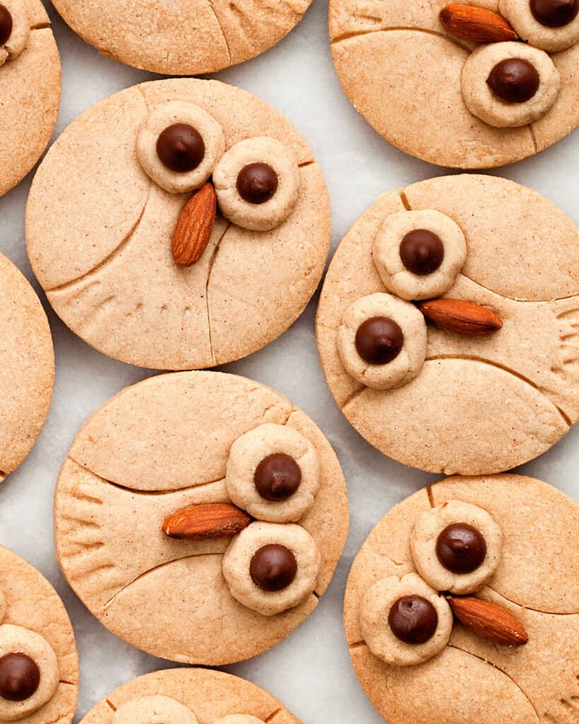 Cinnamon Shortbread Owl Cookies