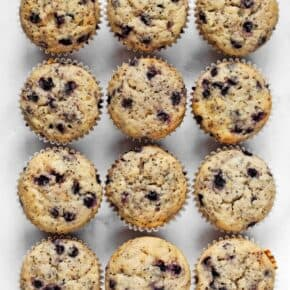 Vegan Blueberry Chia Muffins